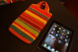 Felted iPad Mini Case Cover