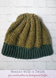 Beanie With A Twist
