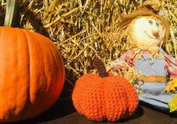 Adorable Crochet Pumpkin