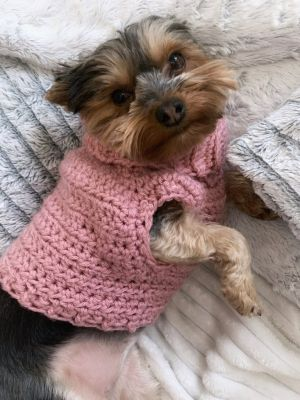Minnie's turtleneck dog sweater