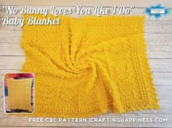 No Bunny Loves You Like I Do - baby blanket