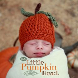 Hello, Little Pumpkin Head