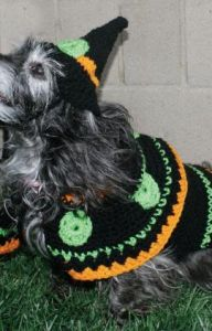 Dog's Crochet Witch Costume
