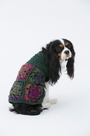 Crochet Patterns Galore The Hippie Dog Sweater
