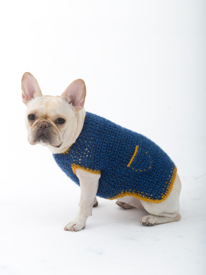 Crochet Patterns Galore The Casual Friday Dog Sweater