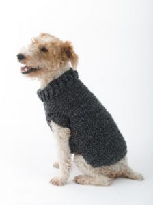 The Poet Dog Sweater
