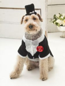 The Barking Groom Tuxedo And Top Hat