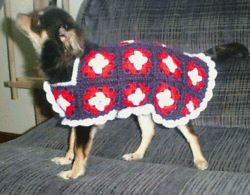 Patriotic Granny Square Sweater for Chi's