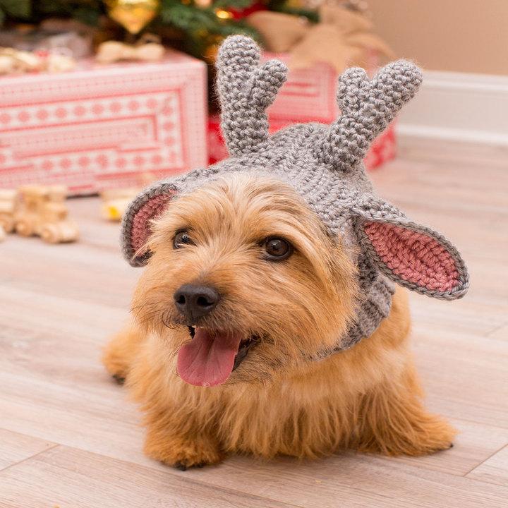 Crochet Patterns Galore - Doggie Deer Snood