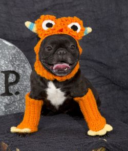 Dog Monster Costume